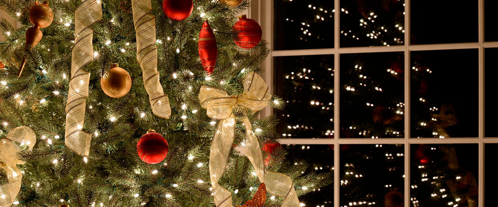 Árbol de Navidad con reflejo en la ventana y luces Startastic.