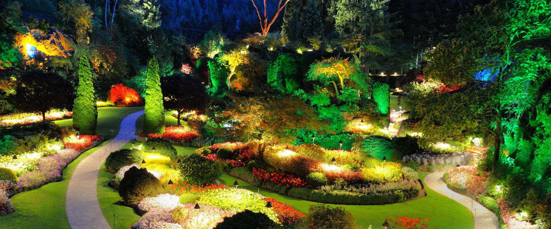Jardín decorado con luz